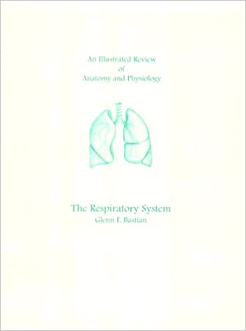An Illustrated Review Of Anatomy The Respiratory System