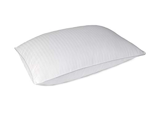 Blue Ridge Home Fashions, Inc. 500 Thread Count Dot Pattern Hybrid Blend Double Cover Pillow, Standard, White
