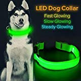 HiGuard LED Dog Collar, USB Rechargeable Glowing Pet Collar Night Safety LED Light Up with Nylon Webbing Perfect for Small, Medium, Large Dogs (Large, Green)