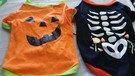 Bundle 2 Pet Costumes Orange and Black Medium for Dogs