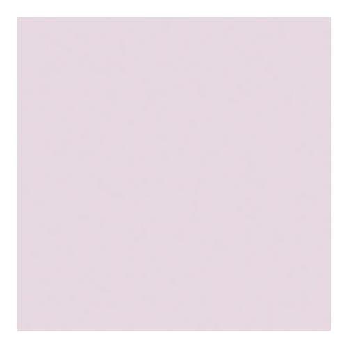 20x24 Color Correction Lighting Filter Rosco Cinegel Tough 1//4 MinusGreen