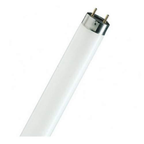 Tienda ingross nueva cesta filtro para aspirador de cenizas luz y CENERIX ceniza