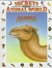 Camels, Isidro Sánchez and Eulalia Garcia, 0836814940
