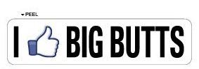 I Like BIG BUTTS - Window Door Wall Bumper Sticker - Apply to any - Sticker Butt
