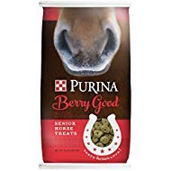 Purina Animal Nutrition Purina Berry Good Senior Horse Treats - Horse Treats Oats