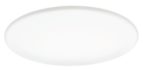 Lithonia Lighting FMXLR M2 Low-Profile 24-Inch Round Energy Star 1-Light Fluorescent Light Fixture, Milky - Fixture Ceiling Earth
