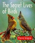 The Secret Lives of Birds, Pierre Gingras, 1552091201