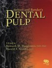 Seltzer and Bender's Dental Pulp, , 0867154152