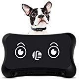 Real Time Personal and Pet GPS Tracker, Dog Activity Monitor for Android/iPhone Waterproof Adjustable Collar Dogs and Pets (Send A Sms Text From A Link)