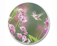 Absorbastone Absorbant Car Auto Cup Holder Coaster Hummingbird Pretty in Pink