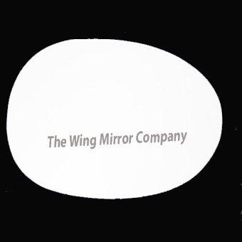 Driver Side Citroen C1 2003,2004,2005,2006,2007,2008 Silver Wing//Door Mirror Glass RH