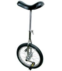 Action Unicycle Acclaim 24X1.75In. Chrome