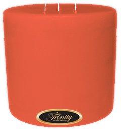 【 開梱 設置?無料 】 Trinity Candle工場 – – – ジョージアピーチ x – Pillar Candle – 6 x 6 B005CSKBW2, KupuKupu:27e6c036 --- a0267596.xsph.ru