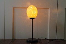 Exploding Stars Ostrich Egg Lamp: Amazon.co.uk: Kitchen & Home