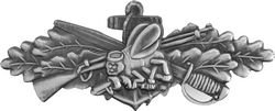 Seabees Combat Service Lapel Pin or Hat Pin (Anodized Silver Finish) by KCM