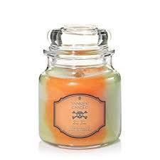 Festive Scent Yankee Candles Toxic Tonic Forbidden Apple /& Spiced pumpkin Medium Jar Candle