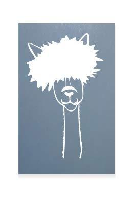 Lama Mit Pony Alpaka Tier Kinder Auto Aufkleber Vinyl Fenster