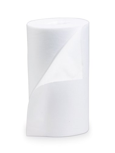 Best Sanitizers SS10017R Dry Wipes Refill Roll, 160 Count (Case of 6) by Best Sanitizers Inc