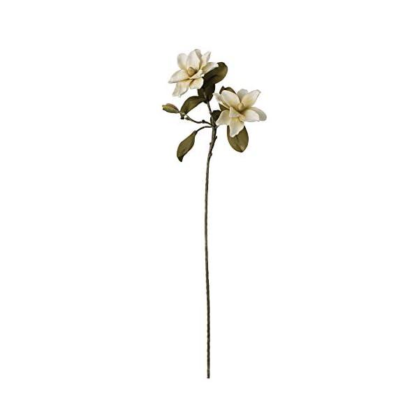 Kalalou Magnolia Flower Botanica, One Size, Off- Off-White