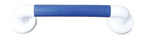 President 300Mm Long Grab Bar Ideal For Volume Use Featuring Ribbed Grips And Cover Caps Finished In Blue To Aid The Partially Sighted By The Tech Lodge
