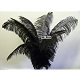 Ostrich Deluxe Formal BLACK- Feather Plume 20-26'' Long-10 Pcs.- by Six Star Sales for Eiffel Tower Vase