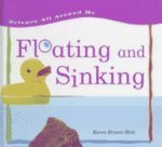 Floating and Sinking, Karen Bryant-Mole, 1575726270