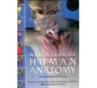 New Atlas of Human Anatomy : Includes CD-ROM Sampler Interactive