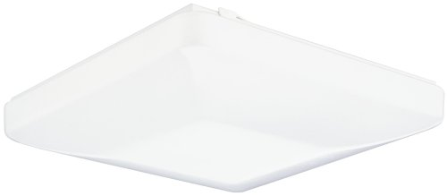 Lithonia Lighting FM 54 ACLS LP M4 Two-Light Fluorescent Flush-Mount Ceiling Fixture, White Acrylic (Fluorescent Christmas Lights)