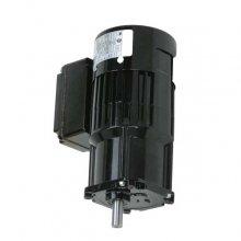 86 RPM Motor for the D215 120V Hot Melt Unit (D2-15, 120V, 2 H/G, RTD, 86 RPM)