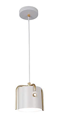 SXMY Iron Art Round Lampe à Suspension LED Plafonnier Appareil d'éclairage Lumières décoratives pour séjour Chambre à Coucher - 1 tête - Blanc
