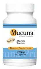 4 Bottles Mucuna Pruriens, L-DOPA, Natural Dopamine, Mood Support, 200mg, 60 Vcaps – Formulated by Ray Sahelian, M.D
