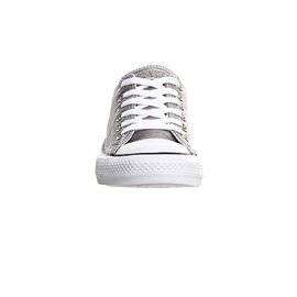 Converse Chuck Taylor All Star Mono Ox, Unisex - Erwachsene Sneaker silber