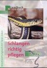 Schlangen richtig pflegen