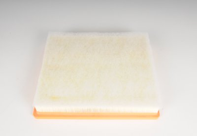 ACDelco A3172C Professional Air Filter