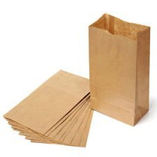 Brown Paper Lunch Bags, Self Standing Durable Lunch Sacks, 100pc Count Standard Size -