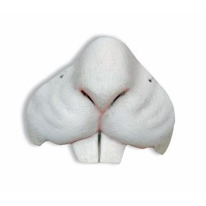 Animal Noses Accessories - 3
