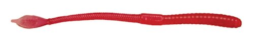 Mann's Bait Company Regular Jelly Worm Fishing Lure (Pack of 20), 9-Inch, Strawberry