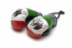 - Mexico Country Flag Mini Boxing Gloves to Hang Over Your Automobile Mirror ... New by SUPERDAVVES SUPERSTORE
