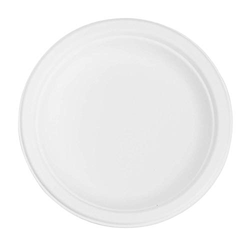 7' White Paper Plates - Karat Earth KE-BPR06-1C 6