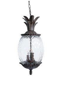 Acclaim 7516BC Lanai Collection 3-Light Outdoor Light Fixture Hanging Lantern, Black Coral