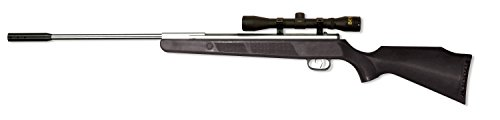 Break Barrel 177cal - Beeman Sportsman Silver Panther 10812S Air Rilfe Combo with 4x32x 40mm