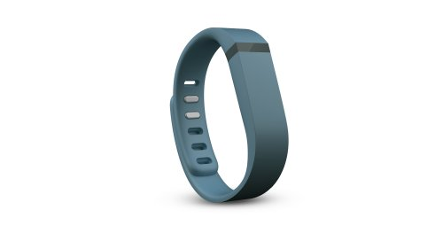 Fitbit Flex Accessory Slate Large