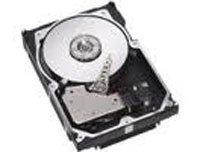 IBM 71P7558 - IBM 71P7558 300GB 10K NHS HD SCSI