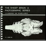 Read Online Sheep Brain - A Photographic Series ((2nd,)90) by [Spiral-bound (2002)] pdf epub
