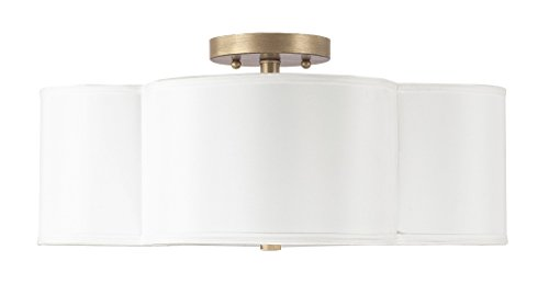 Capital Lighting 4453BG-561 Four Light Semi-Flush Fixture from Capital Lighting
