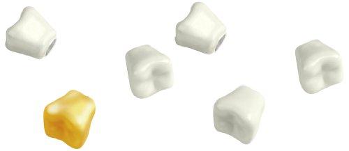 Kikkerland Teeth Magnets, Set of 6 (MG25) (Gifts Dentist)