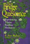 The Bridge of Quiescence : Experiencing Tibetan Buddhist Meditation, Wallace, B. Alan, 0812693604