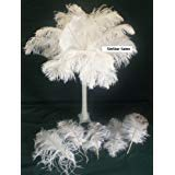 - Ostrich~100 Deluxe Bleach White Ostrich Feather Plumes-10-14