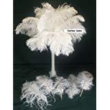 (SPECIAL LOT Wholesale Bulk Ostrich-White 100 Drab Ostrich Plumes-12-14
