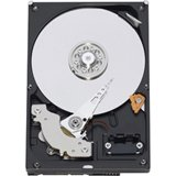 Western Digital WD2500AAJS 250 GB Caviar Blue Hard Drive 250 Gb Wd Caviar